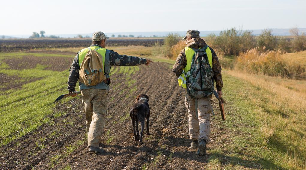 Richiesta di misure urgenti per la gestione della fauna in conseguenza delle normeanti-Covid19.